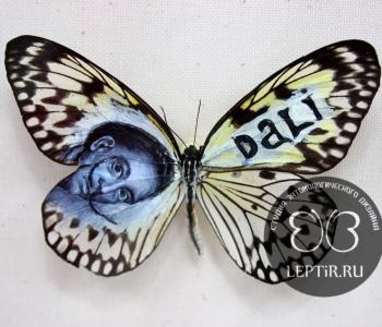 Сальвадор Дали - автопортрет (Идея)
