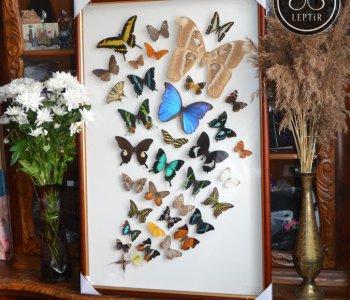 Панно Фонтан из бабочек - 2