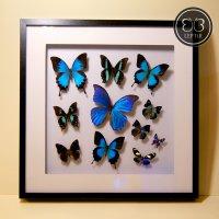 Панно из синих бабочек
